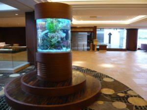 ホテル様 待ち合わせは水槽の前!